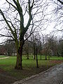 The Green, University of Liverpool 2.jpg