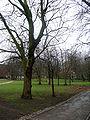 The Green, University of Liverpool 2.jpg