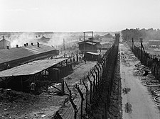 The Liberation of Bergen-belsen Concentration Camp, April 1945 BU4711 (cropped).jpg