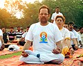 The Minister of State for Minority Affairs and Parliamentary Affairs, Shri Mukhtar Abbas Naqvi participating in the International Yoga Day celebrations, in Faridabad, Haryana on June 21, 2015.jpg