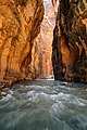 The Narrows, United States (Unsplash).jpg