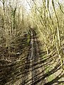 The Old Hull and Barnsley Railway Trackbed - geograph.org.uk - 722754.jpg