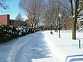 The Path at Wagner College Covered in snow.jpg