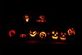 The Pumpkin Line-Up.jpg