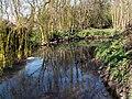 The River Dearne - geograph.org.uk - 387764.jpg