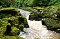 The Strid, Bolton Abbey.jpg