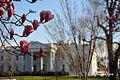 The White House Northside (7645120858).jpg