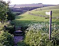 The Wolds Way near Weedley Springs - geograph.org.uk - 10765.jpg