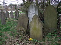 The grave of an anarchist in Ladywell cemetery - geograph.org.uk - 1290690.jpg