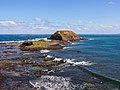 The nobbies phillip island - panoramio (2).jpg
