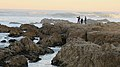 Tide pool to the Asilomar State Beach.jpg