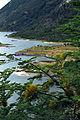Tierra del Fuego19(js).jpg