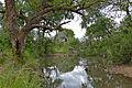 Timfenheni River Crossing (16324352139).jpg