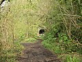 Tintern - abandoned railway tunnel entrance - geograph.org.uk - 477808.jpg