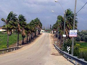 Tirosh - Image: Tirosh 2011