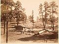 Title- Hance's Cabin. (9672405607).jpg