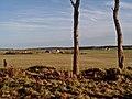 Tomhommie (farm) - geograph.org.uk - 281506.jpg
