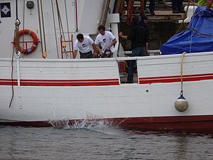 Tonnerres de Brest 2012 - Fée de l'Aulne - 005.JPG