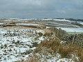 Topping Moor, near Carlecotes - geograph.org.uk - 138422.jpg