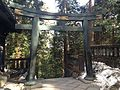 Torii of Inner Shrine of Nikko Tosho Shrine.JPG