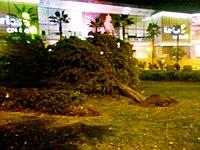 Ibis Hotel Malaga Centro Ciudad