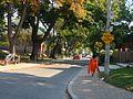 Toronto Cabbage Town 3 (8364176893).jpg