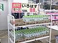 Touhoku-Tsunami Shock 2011 (40).jpg
