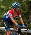 Tour de France 2014, langeveld (14683198527).jpg