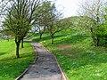 Towards Dundonald motte - geograph.org.uk - 791373.jpg