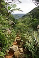 Trail of Mount Omoto 201912 07.jpg