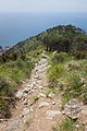 Trail on hill 2.jpg