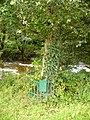 Tree planted to commemorate King George V Jubilee - geograph.org.uk - 955474.jpg