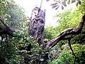 Treebeard striding through the wood at Tringford Reservoir - geograph.org.uk - 1419273.jpg