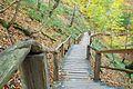 Treppe zum unteren Königsstuhl.jpg