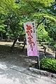 Tsuruma Park Flower Festival Flag 20170527.jpg