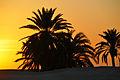 Tunisia-3755 - Tunisian Sunrise (7849815180).jpg