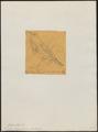 Turdus dryas - 1854 - Print - Iconographia Zoologica - Special Collections University of Amsterdam - UBA01 IZ16300279.tif