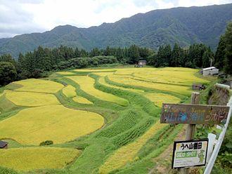 San'in Kaigan Geopark - Image: Ueyama Tanada Autumn