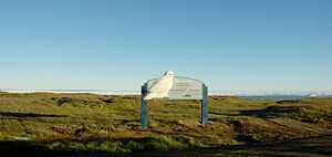 Barrow, Alaska - Sod house remains in Barrow
