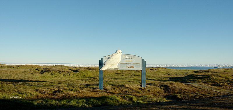 File:Ukpeagvik mounds.jpg