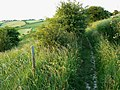 Up the Old Chase Road byway, near Ogbourne St George - geograph.org.uk - 1358624.jpg