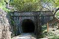Usui-No1-Tunnel-05.jpg