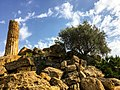 Valley of the Temples, Agrigento, Sicily - 49684690056.jpg
