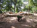 Varnhem innan munkarna kom, den 13 juni 2007, bild 4.jpg