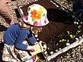 Vauxhall City Farm kids gardening.jpg