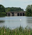 Viaduct over Swithland Reservoir - geograph.org.uk - 516210.jpg