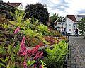 Viele Blumen schmücken im Sommer die Altstadt von Stavanger. 08.jpg