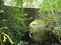 View from a footpath, Nethy Bridge - geograph.org.uk - 37426.jpg
