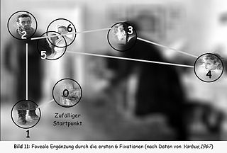 Eye movement voluntary or involuntary movement of the eyes, helping in acquiring, fixating and tracking visual stimuli