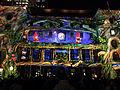 Vivid Syndey, light festival 2015.JPG